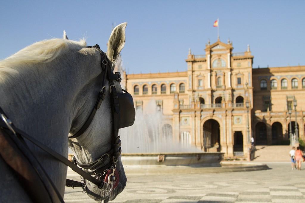 alquiler de coches de caballo en sevilla