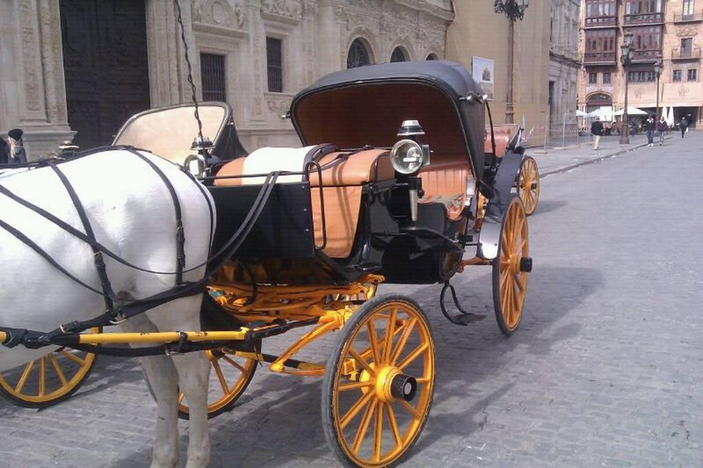 Servicio Inglés paseo en Sevilla